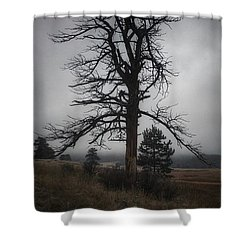 Shower Curtain featuring the photograph Ghostly Snag by Dan Miller
