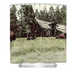 Ghosts Of The Plains Shower Curtain