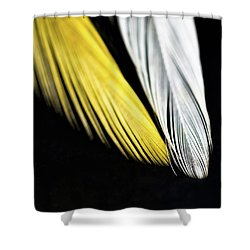 Give Me Wings So I Can Fly Shower Curtain