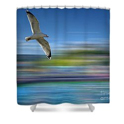 Shower Curtain featuring the photograph Gull Flight #192 by Edmund Nagele
