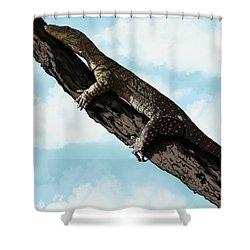 Goanna 1 Shower Curtain