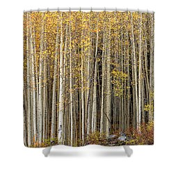 Gold Dust Shower Curtain