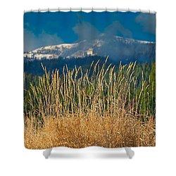Gold Grass Snowy Peak Shower Curtain