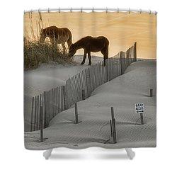 Golden Horses Shower Curtain