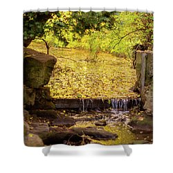 Shower Curtain featuring the photograph Golden Leaf River by Scott Lyons