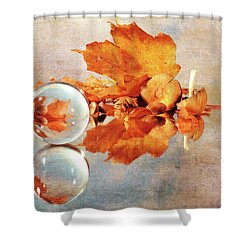 Shower Curtain featuring the photograph Golden Tones Of Fall by Randi Grace Nilsberg