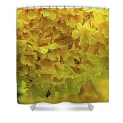 Shower Curtain featuring the photograph Golden Tree, Golden Trumpet Tree Or Tallow Pui Dthn0255 by Gerry Gantt