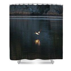 Goosander Shower Curtain