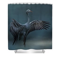 Graceful Dancer Shower Curtain