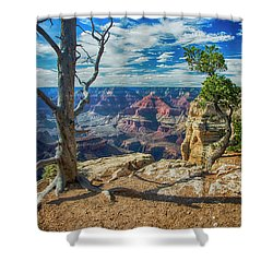 Grand Canyon Springs New Life Shower Curtain