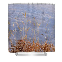 Grasses By The Lake Shower Curtain
