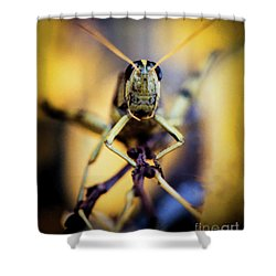 Shower Curtain featuring the photograph Grasshopper by Jon Burch Photography