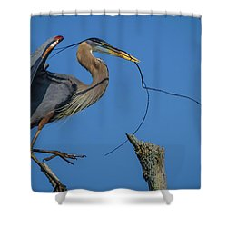 Great Blue Heron 4034 Shower Curtain