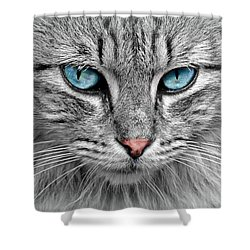Grey Cat With Blue Eyes Shower Curtain