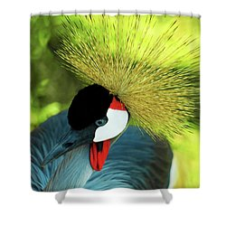 Shower Curtain featuring the painting Grey Crowned Crane Gulf Shores Ab A101218 by Mas Art Studio