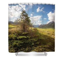 Haiku Forest Shower Curtain