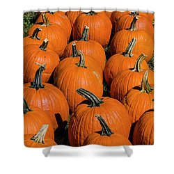 Halloween Harvest Shower Curtain
