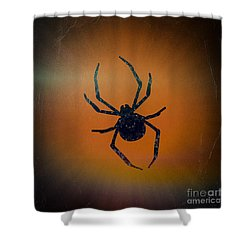 Shower Curtain featuring the mixed media Halloween Spider  by Rachel Hannah