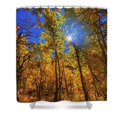 Shower Curtain featuring the photograph Happy Fall by Tassanee Angiolillo