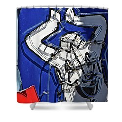 Shower Curtain featuring the photograph Happy, Happy, Joy, Joy by Skip Hunt