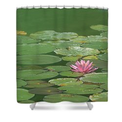 Harmonious Pink Waterlily Shower Curtain