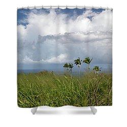 Hawaii Big Island Shower Curtain