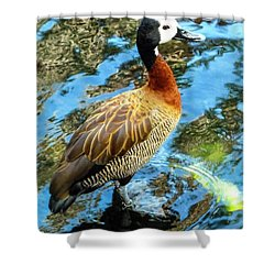 Hawaiian Duck Shower Curtain