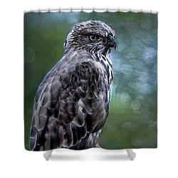 Hawk Eagle  Shower Curtain