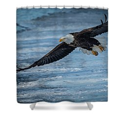Heading Off Shower Curtain