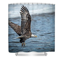 Heading Off To Eat Shower Curtain