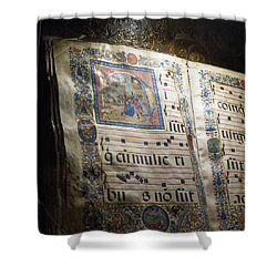 Shower Curtain featuring the photograph Heavenly Music by Alex Lapidus