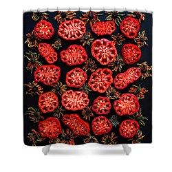 Heirloom Tomato Grid Shower Curtain