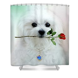 Hermes And Rose Shower Curtain