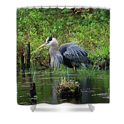 Shower Curtain featuring the photograph Heron In Beaver Pond by Debbie Stahre