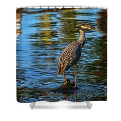 Heron On Rock Shower Curtain