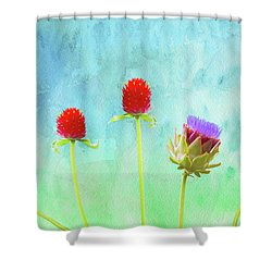 Heterologous Diversity Shower Curtain