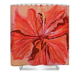 Hibiscus Color Lines Shower Curtain