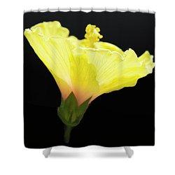 Hibiscus In Black Shower Curtain