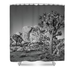 Hidden Valley Rock Shower Curtain