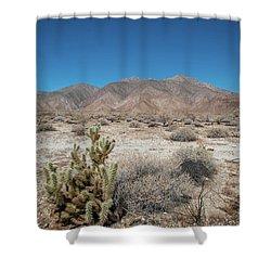 High Desert Cactus Shower Curtain