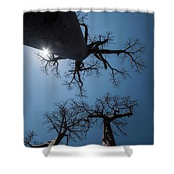 Shower Curtain featuring the photograph High Noon by Alex Lapidus