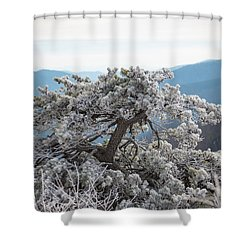 Hoarfrost In The Blue Ridge Mountains Shower Curtain