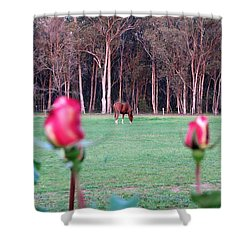 Horse And Roses Shower Curtain