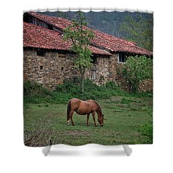 Horse In The Field Next To A Rural House Shower Curtain
