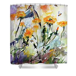 Hummingbird And Dandelions Shower Curtain