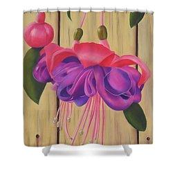 Hummingbird Delight Shower Curtain