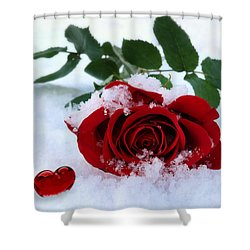 I Give You My Heart Shower Curtain