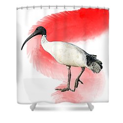 I Is For Ibis Shower Curtain