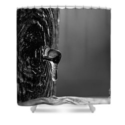 Icy Drip Shower Curtain