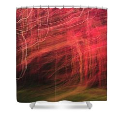 In Depth Of A Forest Shower Curtain
